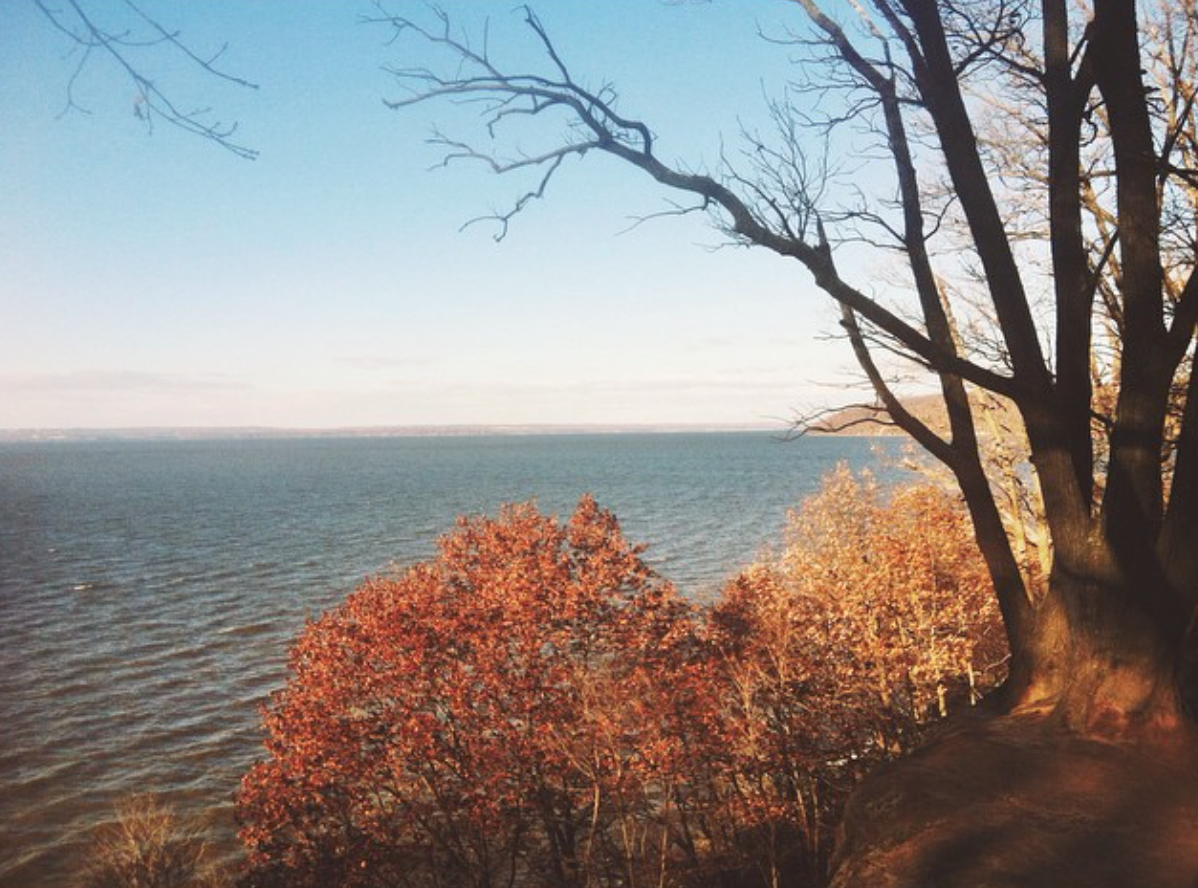 Elk Neck State Park, Northeast, MD
