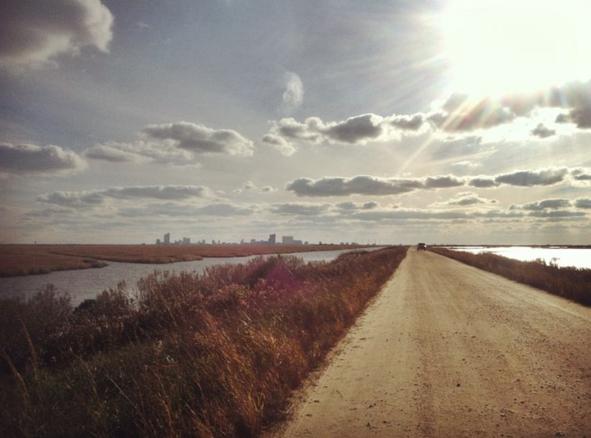 Edwin B. Forsythe National Wildlife Refuge, Galloway, NJ (Atlantic City skyline in the distance)